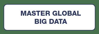 MASTER GLOBAL BIG DATA